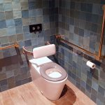 Avail DDA Accessible Toilet Gold